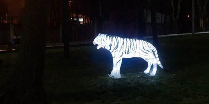 Конкурс светящихся скульптур проведут вМогилеве кновогодним праздникам