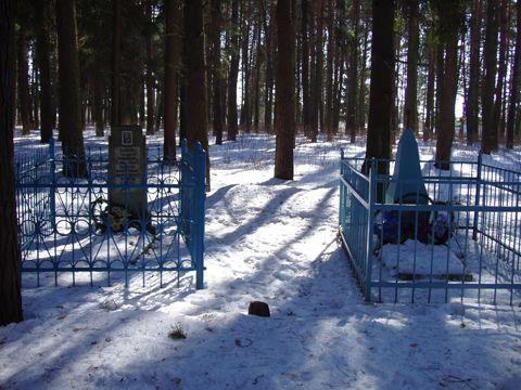Рядомстоящие индивидуальные могилы (Печерский лесопарк)