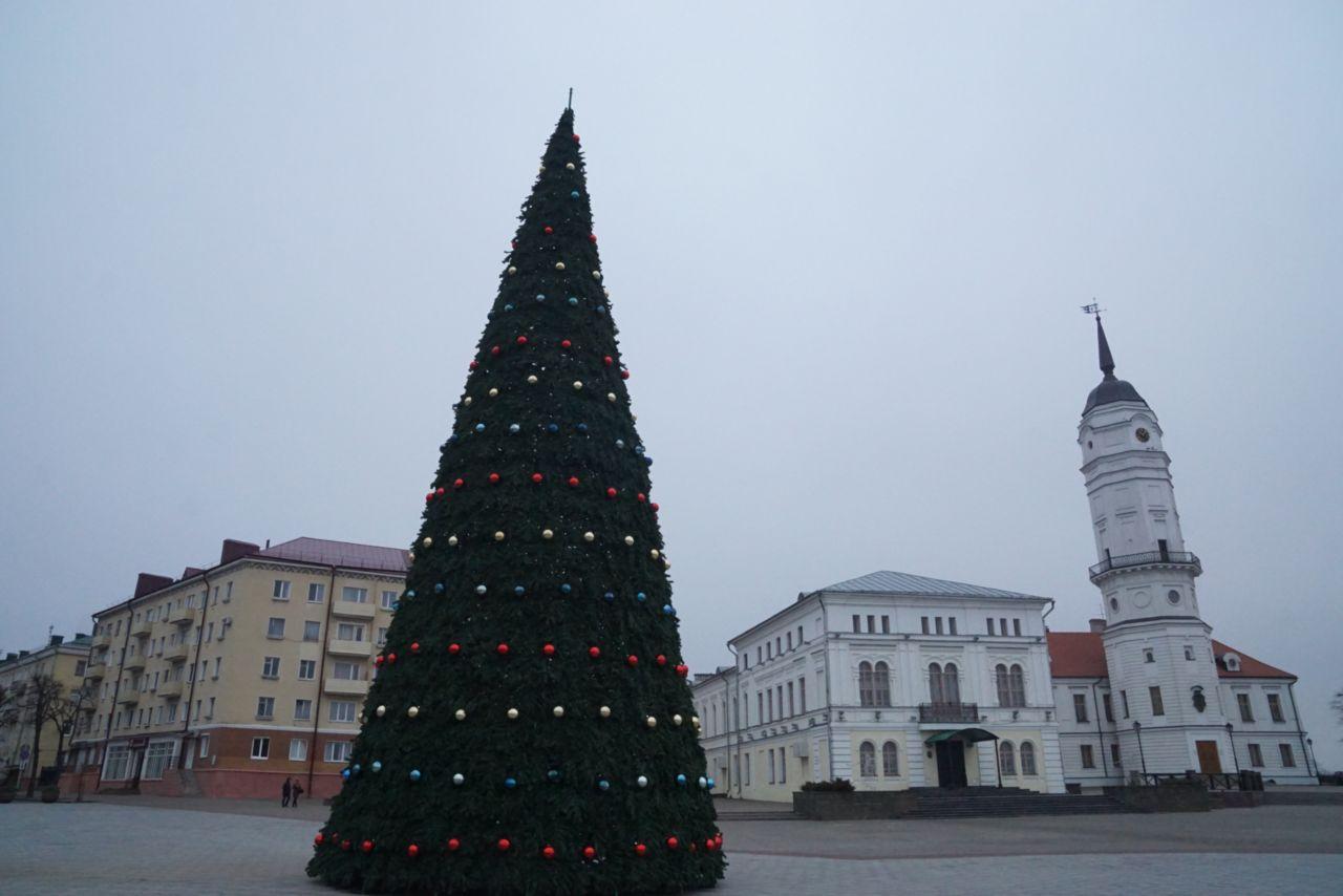 Главные атрибуты Нового года— елки— устанавливают вМогилеве