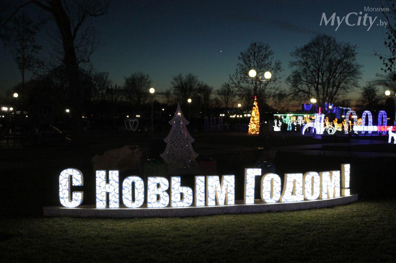 Подникольский парк вМогилеве накануне Нового года: «дневные наряды» и«вечерние платья»