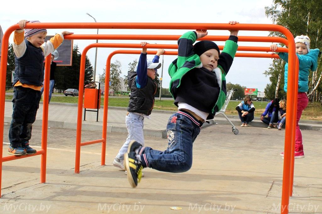 Скейт-парк с зоной для воркаута