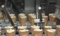 Новую производственную линию запустили наМогилёвской фабрике мороженого