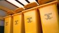 Доконца года вчастном секторе Могилева смогут полностью сортировать отходы