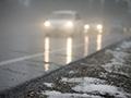 Мокрый снег, переходящий вдождь, идо+5°С обещают синоптики вМогилеве вначале следующей недели