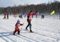«Могилёвская лыжня-2019» приглашает всех настарт 19января