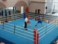 Могилевские файтеры завоевали пять золотых медалей напервенстве Беларуси побоксу