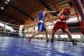Могилевские спортсмены завоевали 8 медалей на республиканской спартакиаде ДЮСШ по боксу