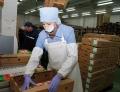 Направо поставок мяса птицы вКитай рассчитывают сертифицировать могилёвское СЗАО «Серволюкс»