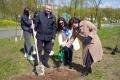 Могилев присоединился кмеждународной акции «Сад Памяти»