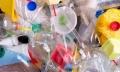 Организации иИП вМогилеве обязаны обеспечивать сбор иобезвреживание отходов упаковки