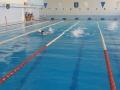 Старейший школьный бассейн Могилева планируют отремонтировать кновому учебному году